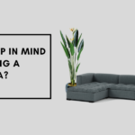 What to keep in mind before buying a Corner sofa_